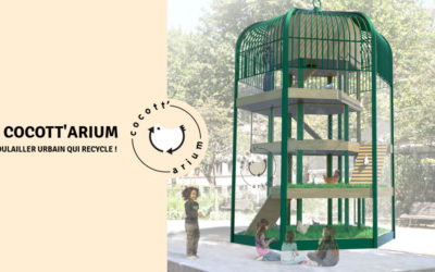 Cocott'arium : le projet prend son envol à Neuville