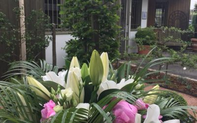 L'entreprise Olivier Vignal Paysagiste nous ouvre les portes de son jardin