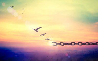 2021 : la liberté retrouvée ?
